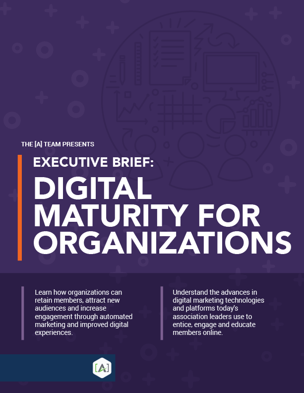 Executive Brief: Digital Maturity for Organizations